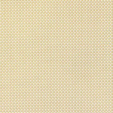 Natte White Mustard